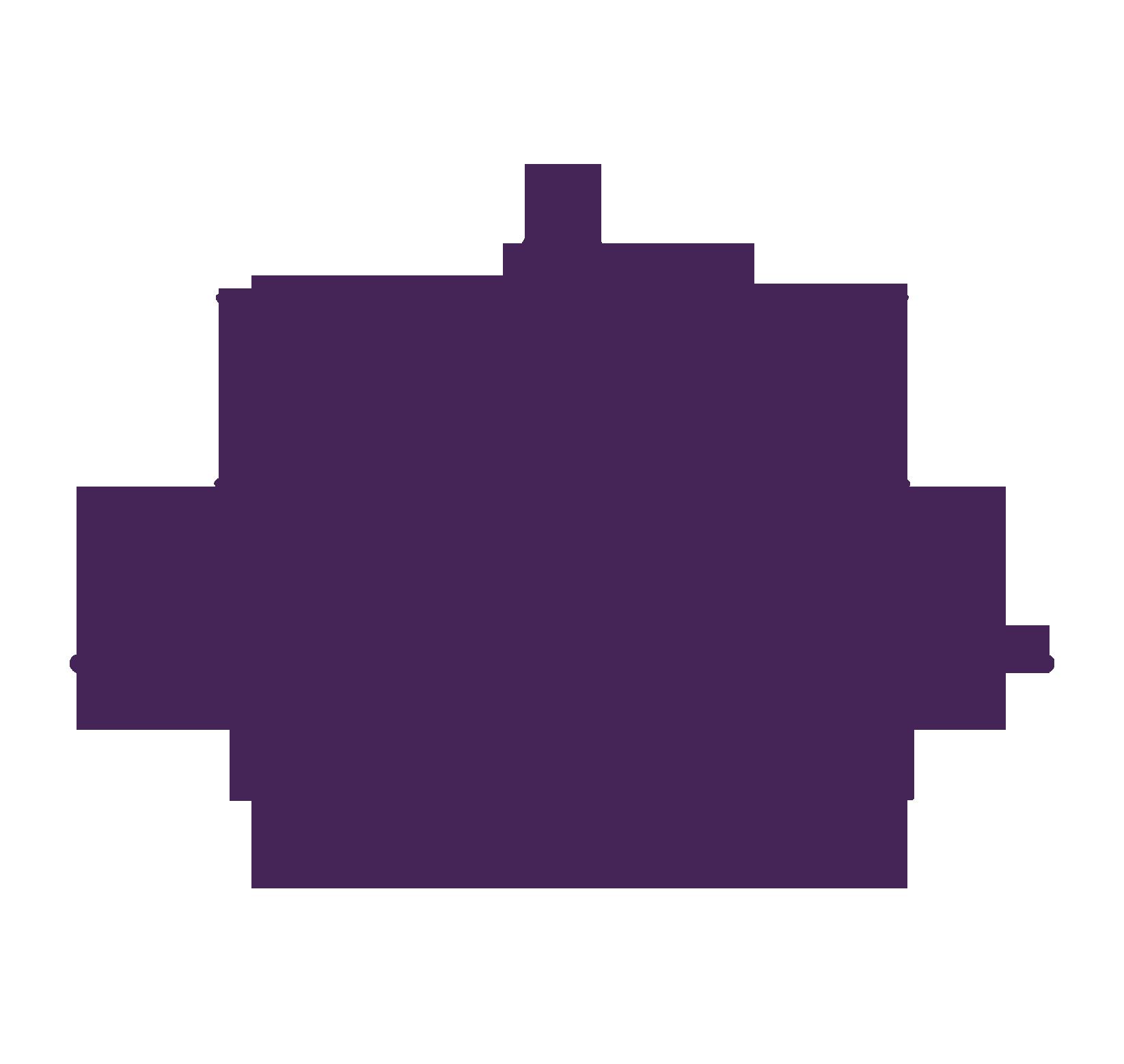 Bluum.cl